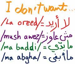 Arabizi Effects on the Arabic language Essay